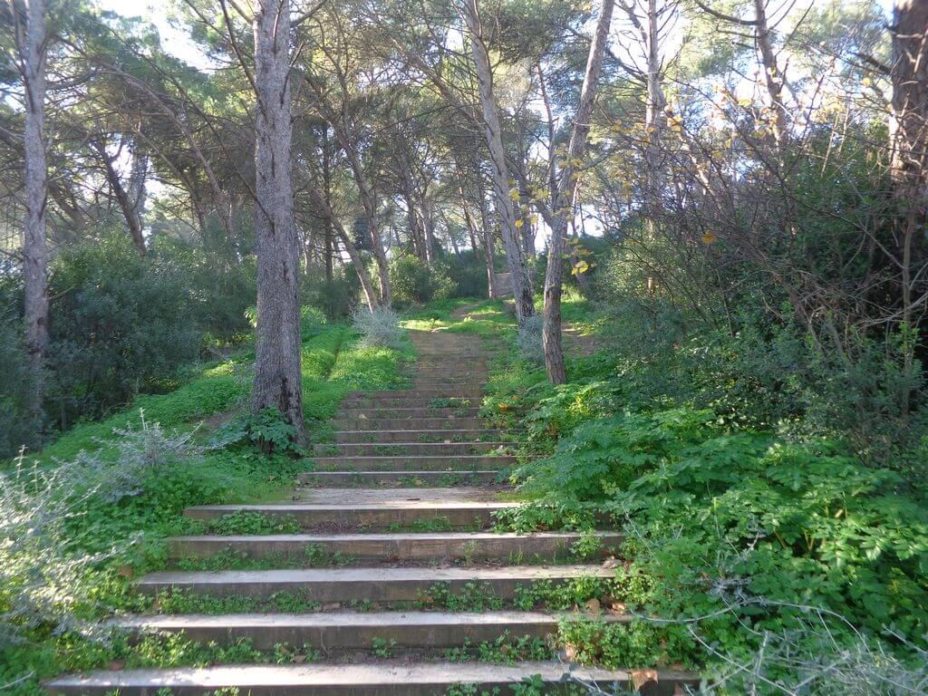 caminhada-vale-jamor-lisboa-caminhando-17